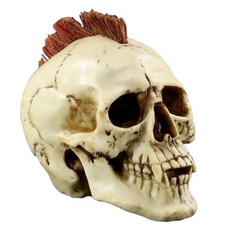 Totenkopf Irokesen-Punker